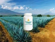 Agave Inulin